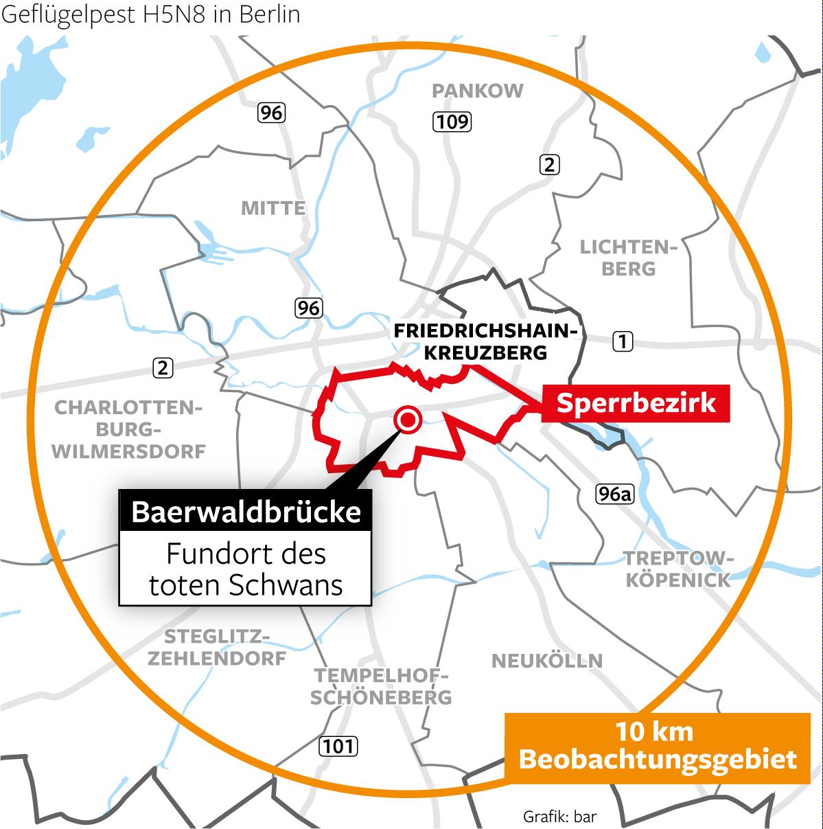 Vogelgrippe Berlin