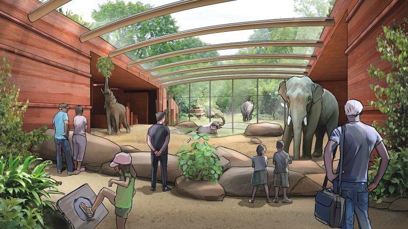 Wie sich der Berliner Zoo komplett verändern wird - Berlin ...